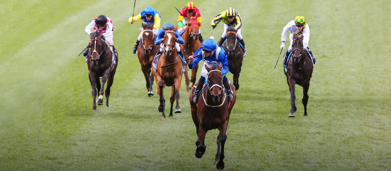 James McDonald - Horse Racing - AthletesVoice